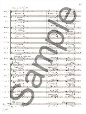 Olivier Messiaen: Des Canyons aux Etoiules Vol. 2 [Nos 6-7]: Orchestra