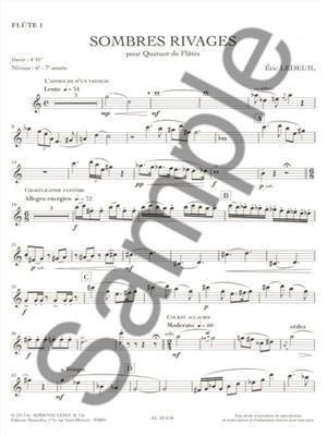 Éric Ledeuil: Sombres Rivages: Flute Ensemble