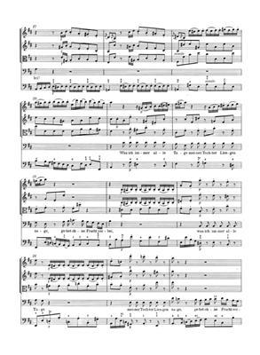 Johann Sebastian Bach: Cantata BWV 211 Schweigt Stille: Orchestra