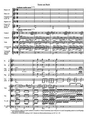 Ludwig van Beethoven: Symphony No. 6 F major op. 68 'Pastorale': Orchestra