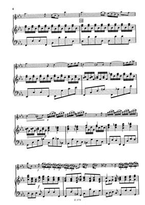 Ference Hartai: Recorder Concerto In C Minor RV 441: Flute