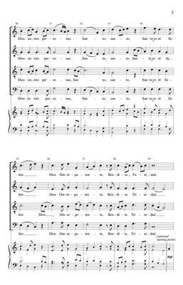 Edwin M. Willmington: Santo, Holy: SATB