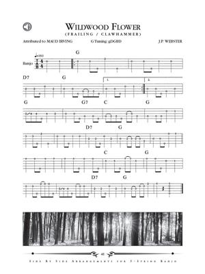 Dick Sheridan: Dual Arrangements for the 5-String Banjo: Banjo