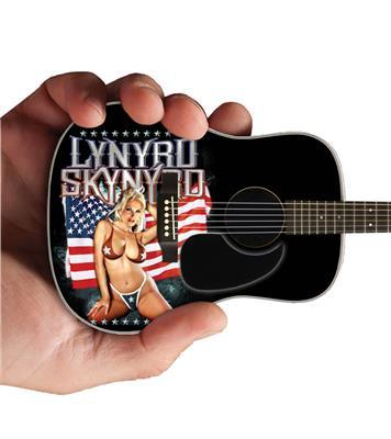Lynyrd Skynyrd - Acoustic Guitar: Gifts