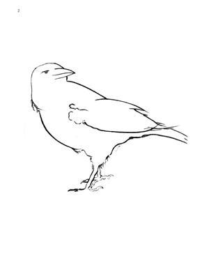 William Bolcom: Bird Spirits: Piano or Keyboard