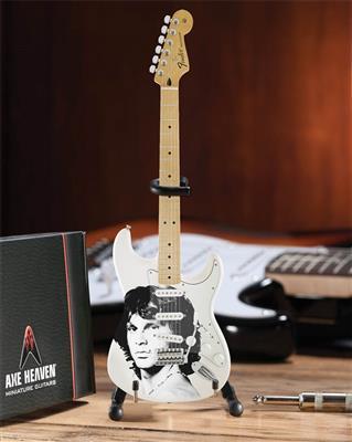 Jim Morrison Tribute Fender Stratocaster: Gifts