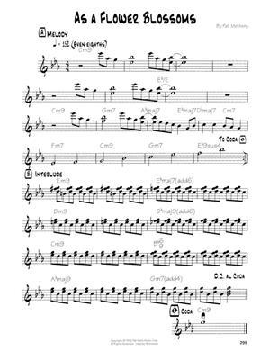 Pat Metheny: Pat Metheny Songbook: Guitar or Lute