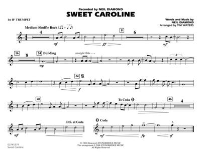 Neil Diamond: Sweet Caroline - Marching Band: Arr. (Tim Waters): Concert Band