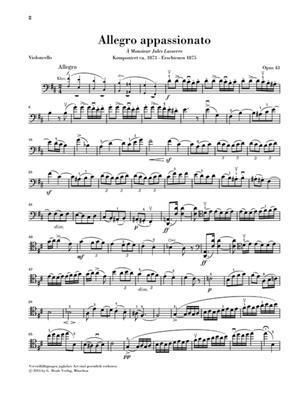 Camille Saint-Saëns: Allegro appassionato op. 43: Cello