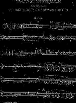 Ludwig van Beethoven: Violin Concerto D Op.61 Cadenzas: Violin