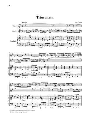 Johann Sebastian Bach: Triosonate Fur Zwei Floten Und Continuo: Chamber Ensemble