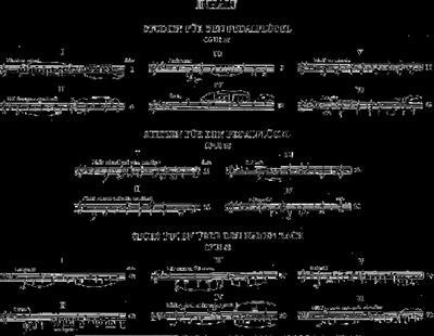 Robert Schumann: Works for Organ or Pedal Piano: Organ