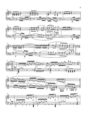 Ludwig van Beethoven: Piano Sonatas, Volume 2 Paperback: Piano