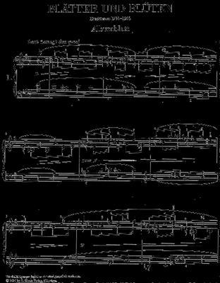 Max Reger: Blätter Und Blüten ( 12 Klavierstücke ): Piano
