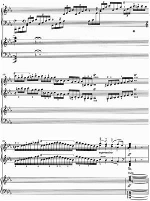 Ludwig van Beethoven: Piano Concerto No. 5 In E Flat Major Op. 73: Piano Ensemble