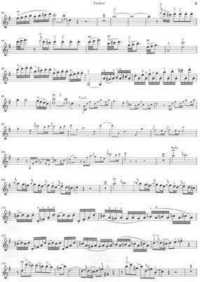 Wolfgang Amadeus Mozart: Violin Concerto No.3 In G K.216: Violin