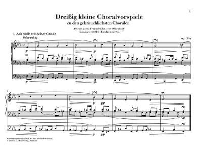 Max Reger: 30 Kleine Choralvorspiele Opus 135A: Organ
