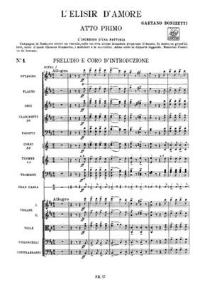 Gaetano Donizetti: L'elisir d'amore: Opera